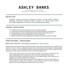 free resume templates for microsoft word resume template free best template idea