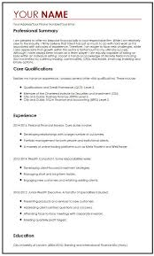 professional cv template 28 images professional resume