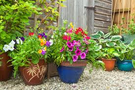 Gardening Trends 2017 Garden Ideas And Trends For 2017 Walls And Floors