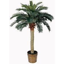 4 sago silk palm tree walmart