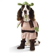 Halloween Costume Ideas Dogs 396 Cute Animals Images Pet Costumes Costume