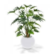 plante de bureau philodendron artificiel xanadou 80 cm plantes artificielles et