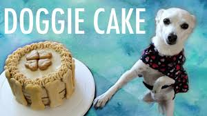 how to make a cake for a dog dog birthday cake recipe youtube