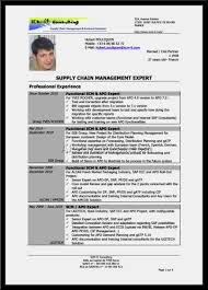 Supply Chain Manager Sample Resume by Supply Chain Manager Resume Template Youtuf Com