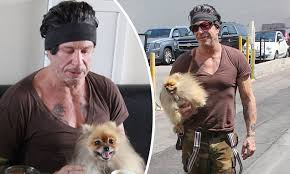 Mickey Rourke News Newslocker - mickey rourke is joined by cute pooch as he dines out in beverly