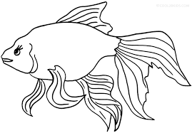 printable goldfish coloring pages kids cool2bkids