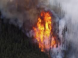 Wildfire Alaska 2015 Map by The 2015 Fire Season Hasn U0027t Broken Any All Time Records U2014 Yet