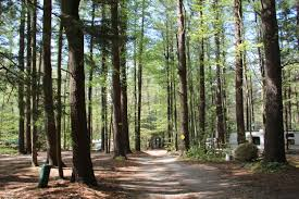 Campgrounds Near Six Flags New England White Pines Campsites