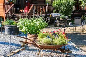 july garden 2015 drycrikjournal