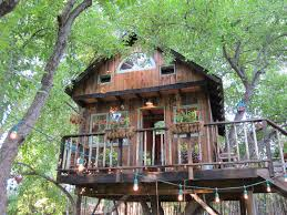large tree houses with classy lighting design for large tree