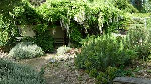 Ventnor Botanic Gardens Ventnor Botanic Garden Tickets 2for1 Offers