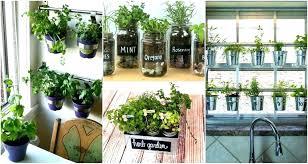 indoor herb garden wall diy wall herb garden ghanadverts club