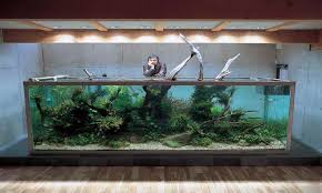 cool home accessories cool fish tank decorations interior