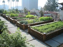 Benefits Of Urban Gardening - the benefits of roof gardens in an urban setting keep oakland