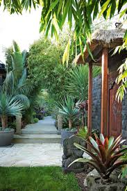 creative tropical landscaping ideas with a retaining wall back