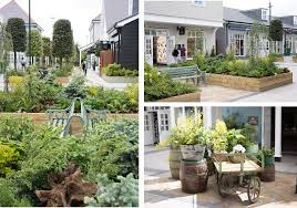 native plants of ireland immersive landscaping at kildare village nikki tibbles wild at heart