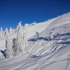 Gaarten Hotel Benessere Tripadvisor by Settimana Bianca Asiago Neve Sci 2018 Da 315 U20ac Ski Inclusive