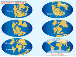continental drift lesson kids theory u0026 facts study