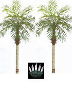 palm tree with lights ebay