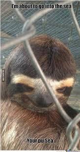 Dragon Sloth Meme - pedo sloth by pookiepotamus meme center