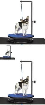 dog grooming tables for small dogs grooming tables 146241 pawhut deluxe professional z lift