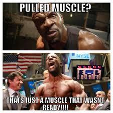 Gym Relationship Memes - best of 25 gym relationship memes wallpaper site wallpaper site