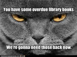Caturday Meme - falvey memorial library villanova university caturday cat meme
