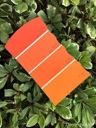 orange you glad you like the color orange decorchick
