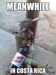 Costa Rica Meme - costa rica meme rica best of the funny meme