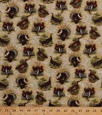 cotton turkeys birds toms gobblers hens thanksgiving