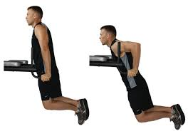 Triceps Bench Dips Workout Of The Month 10 12 The Muscle Sculpting Power Workout