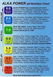 117 best alkaline food images on pinterest alkaline foods