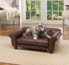 cute sofa dog bed sofa dog bed ideas u2013 dog bed design ideas