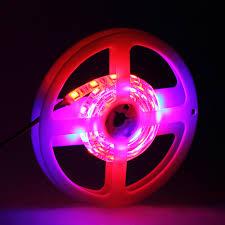 Neon Decoration Interieur Fluorescent Bande Lumi U0026egrave Re Achetez Des Lots à Petit Prix