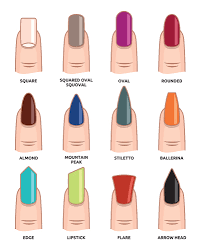 how to different nail shapes beauty nail pinterest