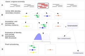 de novo assembly of the transcriptome of the non model plant