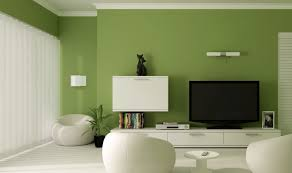 green accent walls zamp co
