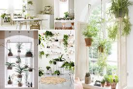 Indoor Garden by 10 Amazing Indoor Garden Ideas To Brighten Your Home U2014 Desima