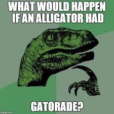 Gatorade Meme - philosoraptor meme imgflip