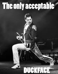 Freddie Mercury Meme - freddie mercury meme freddie mercury laughs pinterest