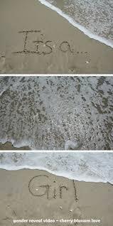 thanksgiving gender reveal ideas 20 best florida thanksgiving 2014 images on pinterest beach