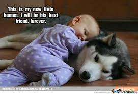 Cute Best Friend Memes - mans best friend since birth by recyclebin meme center