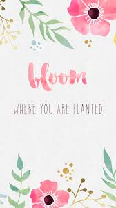 girly images for background 13 phone backgrounds to keep you motivated her campus