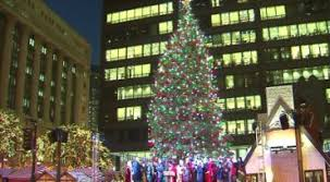62 foot spruce from grayslake is chicago s tree cltv