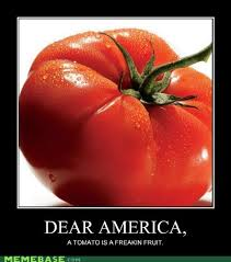 Tomato Meme - memebase tomato page 2 all your memes in our base funny