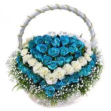 white and blue roses white and blue heart roses 1 100 flowers plants