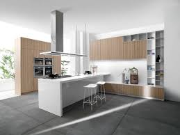 modern grey kitchen design and decoration using mount ceiling