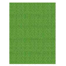 Shaw Area Rugs Shop Shaw Living Grass Rectangular Indoor Tufted Area Rug At Lowes Com