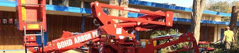 m s wesley tree service tree care chico redding paradise