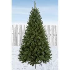 7ft christmas tree premier decorations majestic noel pine christmas tree 7ft
